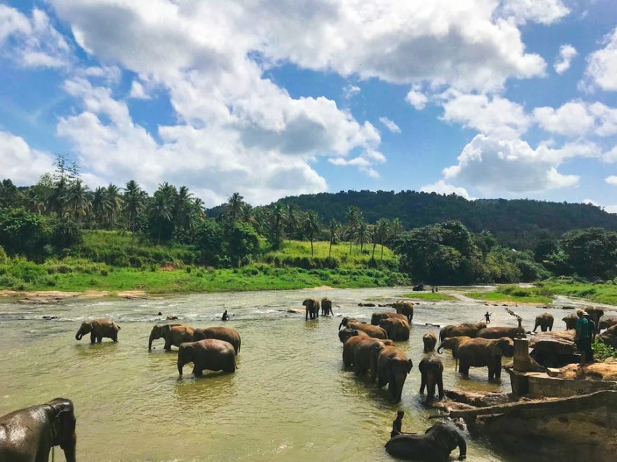 Explore Sri Lanka in 4 Nights / 5 Days